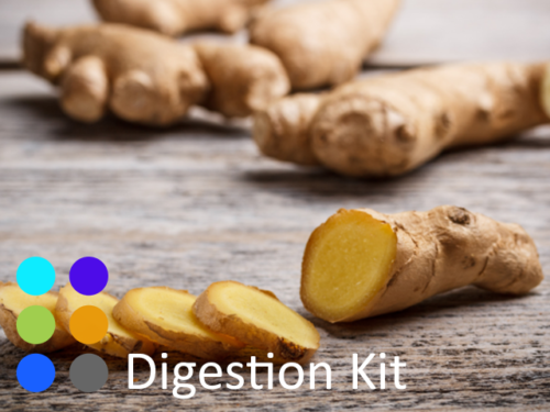 Digestion-Kit-at-Organic-Chinese-Herbs