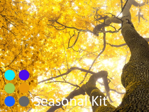 Seasonal-Kit-at-Organic-Chinese-Herbs